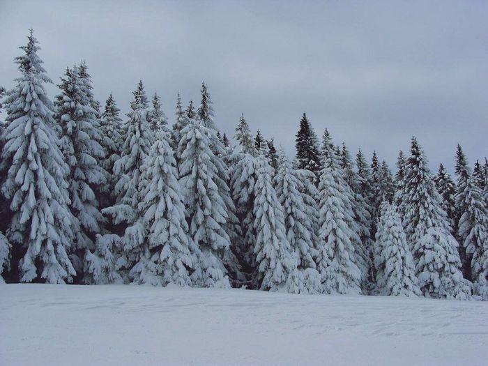 Mountains Enjoying Life Hello World Winter