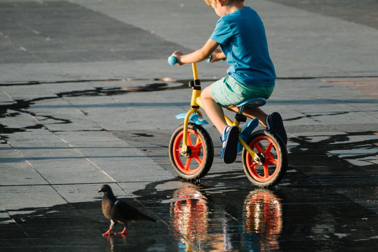 Bicycle Bird Casual Clothing Color Composition Day Eye4photography  EyeEm Masterclass Full Length Kid Kids Being Kids Leisure Activity Lifestyles Light Mammal Outdoors Pets Photography Reflection Shootermag Street Street Photography Streetphoto_color Streetphotography Water Reflections