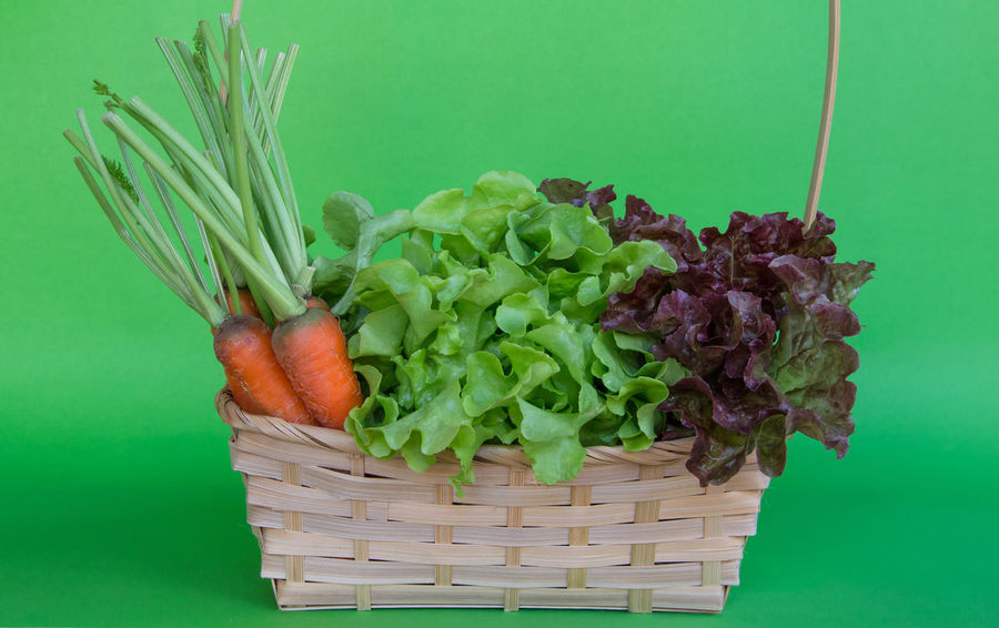 fresh green and red oak vegetables with baby carrot in the basket Green Color Greenery Vegetable Vegetarian Healthy Eating Healthy Healthy Lifestyle Green Oak Red Oak Leaves Basket Salad Organic Farming Organic Food Freshness Foodphotography Vegetables & Fruits Baby Carrots Carrots Orange Color Objects
