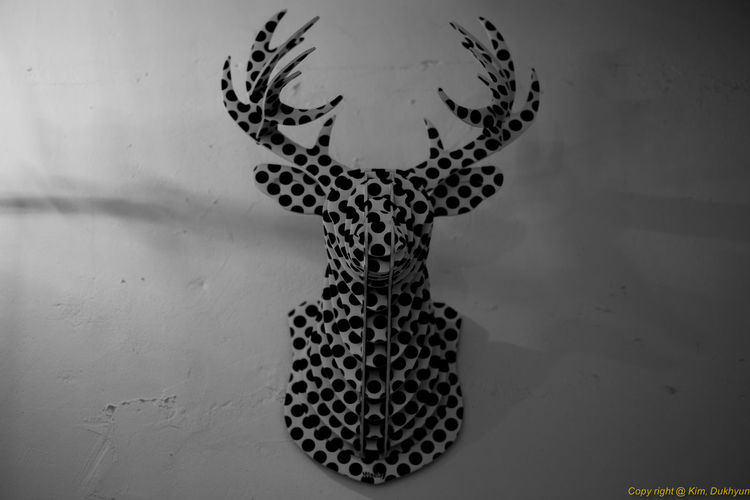 Animal Representation Art Art And Craft Carving - Craft Product Close-up Craft Creativity Design Human Representation Hunting A Deer Indoors  No People Pattern Sculpture Shadow Statue Still Life Studio Shot Wall - Building Feature