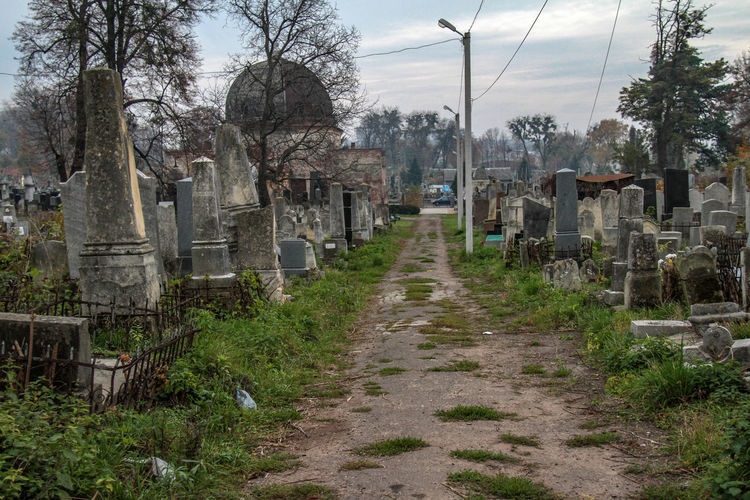 Jewish Jewish Cemetery Cemetery Cemetery Monuments Day Grave Gravestone Graveyard Jewish Cemetery Memorial Nature No People Outdoors Sky Tombs Tombstone Tree