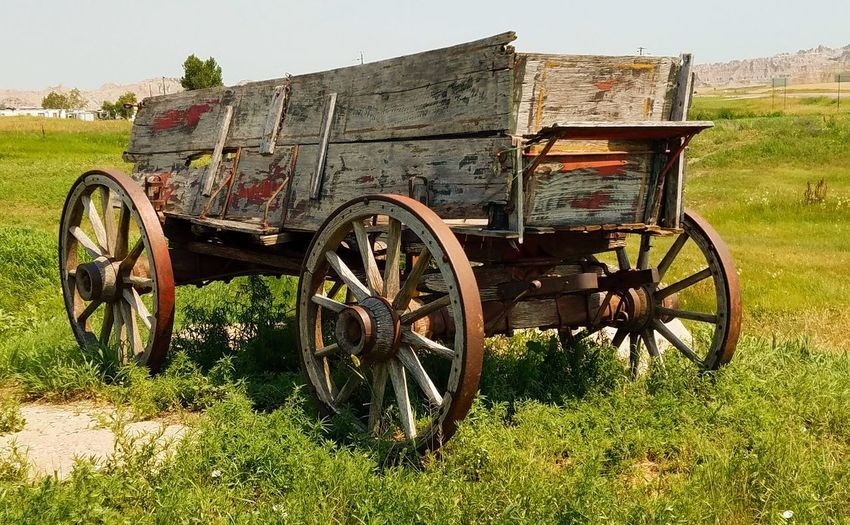 South Dakota Old Wagon Wagon Cart Forgotten Rural Scene Agriculture Wheel Field Wagon Wheel Sky Grass Cart Horsedrawn Carriage