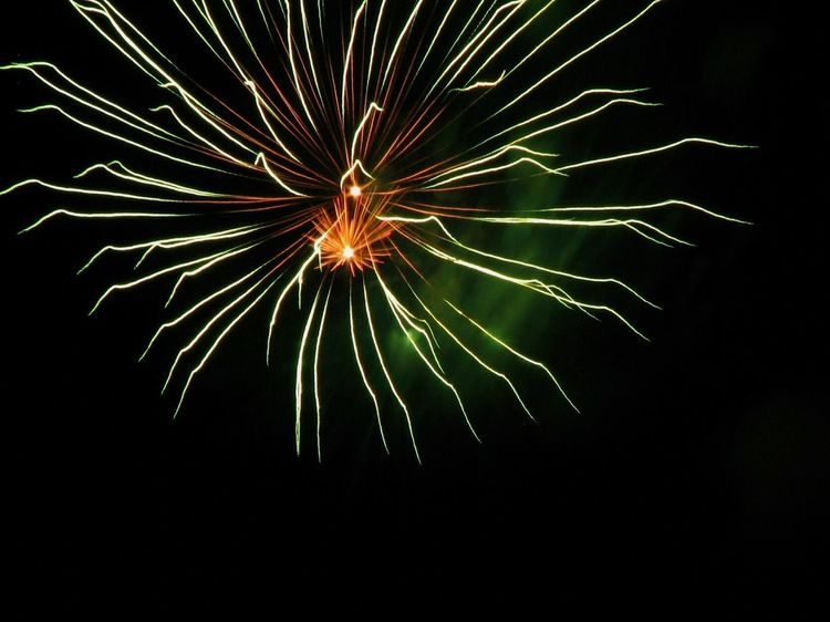 Fireworks Nightphotography Fireworksphotography Fireworks In The Sky Night Photography Eye4photography  Check This Out EyeEm Gallery Eyeem Photography ArtWork Fireworks Display Color Explosion Things I Like Taking Photos Night Lights Photography Firework Feel The Journey Eyeem Fireworks Eyeemfireworks Eyeem Night EyeEm Sky Lover From My Point Of View FireWorkDisplay 42 Golden Moments
