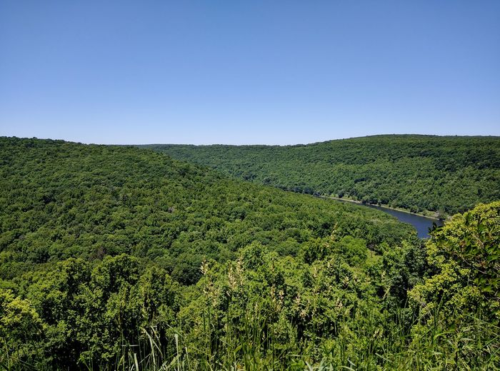 Outlook Allegheny River Western Pennsylvania Forest River Bend