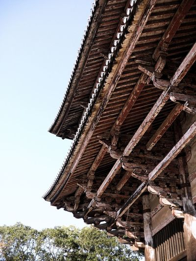Massive Shrine at Nara park made from wood Nara Park Nara Deer Park Japan Low Angle View Sky Architecture Built Structure No People Nature Building Exterior Building History Belief Roof Clear Sky