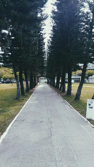 Campus Universidade Sc Dia De Enem. Lindo Dia