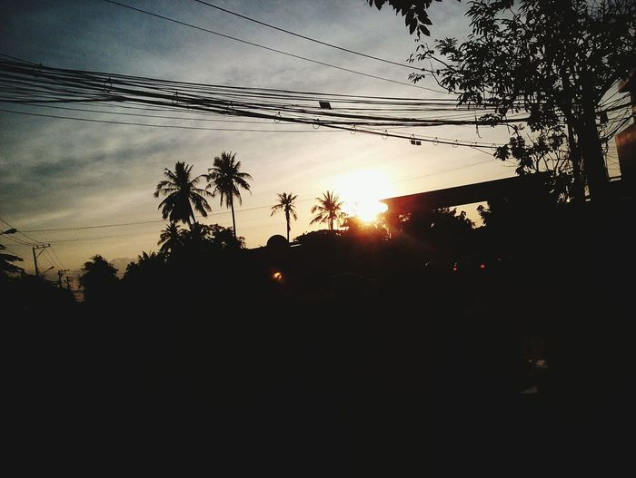 Sunset Silhouette Nature Sun Sunbeam Sky Beauty In Nature Tree Growth Outdoors No People Scenics Bymyphone Sunnyday 🌸🌷🌿 Viet Nam Day