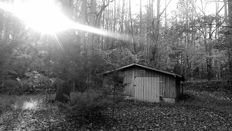 Hiking❤ Creepy House Walking Alone In The Woods
