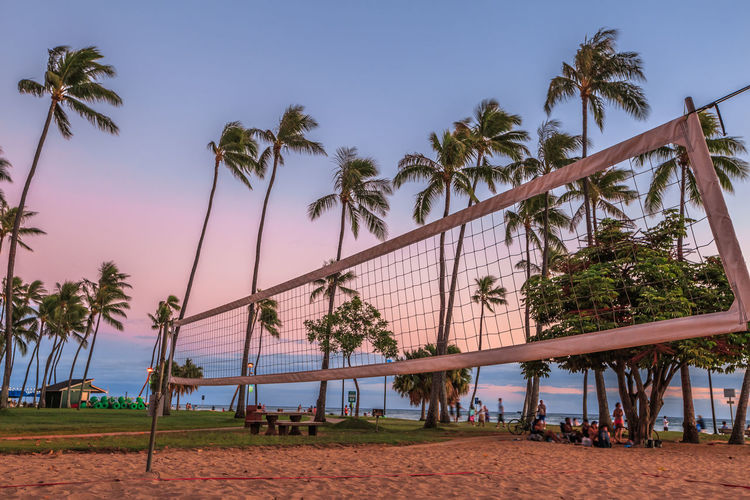 Volleyball net at beach against palm trees during sunset