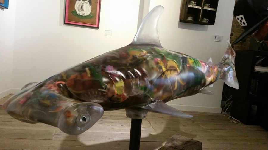 Street Artist Fantastic Exhibition Endangered Species Using Art Talented Hammerhead Shark Resin Filled With Dinosaurs Love Art Awareness
