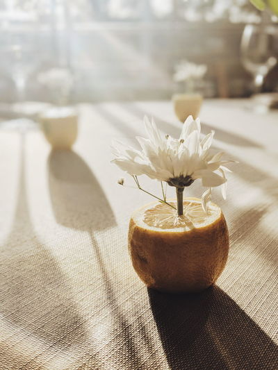 Close-Up Of White Flower With Citrus Fruit On Table