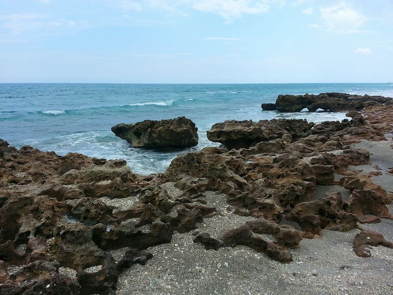 The KIOMI Collection coquina shoreline of Jupiter, Florida Seashore Coastline Jupiter Florida Jupiter Fl Seascape Ocean Beach Ocean Rocky Coastline Rocky Beach Waves, Ocean, Nature