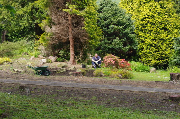 Cought Off Guard  Caught Taking A Break Gardener Break Time Sat Down Long Day Hard Work Deserved Rest Englishman Gardens Todmorden England Trees Park Grass Tree Stumps Rocks Bushes Flowers Wheelbarrow Pentax Lot Of Work Snap A Stranger