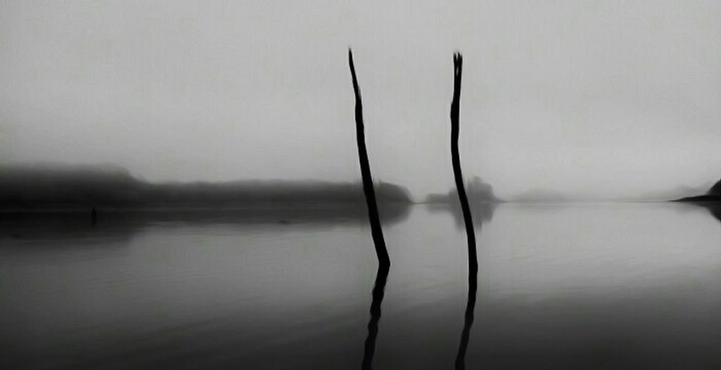 At the end of a floating dock these two remnants of trees stand alone, a note to a time before a lake was here, a place where foggy mornings grant one a place to get lost in thought....... Repost Lakeside Foggy Landscape Foggy Morning Lost In Thought... Digital Manipulation Water Reflections TreePorn Fog Lake Fog Streamzoofamily Black And White Photography Nature Photography Peace And Quiet Superphoto Indiana Snapseed Darkness And Light Lake View Lake Photography Eyemnaturelover EyeEm Nature Lover Hidden Gems  Nature Black And White Two Is Better Than One Perspectives On Nature