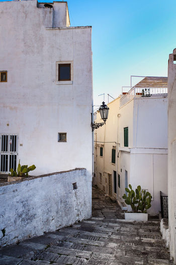 Architecture Built Structure Building Exterior Building Residential District Nature No People Day Sky Window Plant City Outdoors House Old Clear Sky Sunlight Weathered Town Blue Alley Puglia Italy White Village