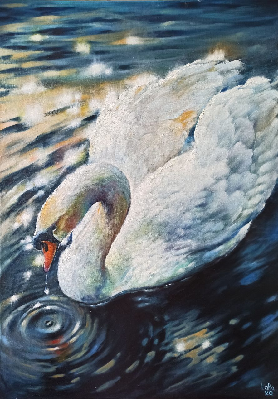 VIEW OF SWAN FLOATING ON LAKE