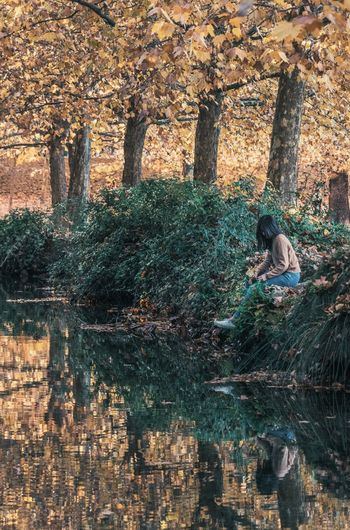 Autumn reflection Autumn Tree Plant Water Nature Real People Day Reflection One Person Waterfront Lifestyles Leisure Activity Adult Built Structure Architecture Women Lake Sitting Outdoors Change A New Perspective On Life Tree Nature Reflection Adult Sitting