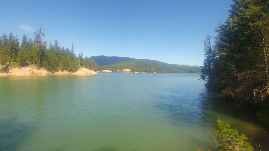 Tree Water Mountain Clear Sky Forest Lake Rural Scene Pinaceae Panoramic Pine Tree