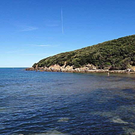 Enjoying The Sun Relaxing Sunshine Sea