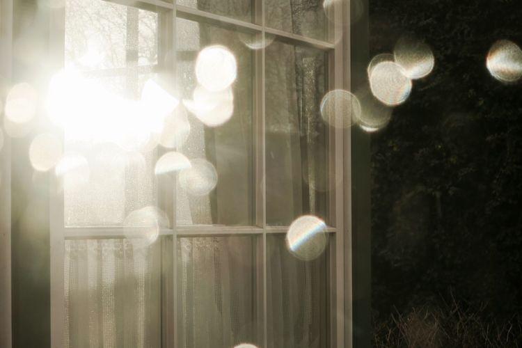 Illuminated Indoors  Lighting Equipment Lights Nature Night No People Summer Sommergefühle