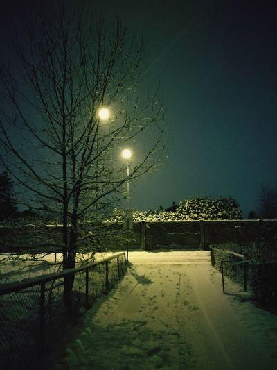 'WINTER NIGHT' Oslo 2019 Winter Cold Urban Skyline Urban Urbex Streetphotography Cold Temperature Ice Night