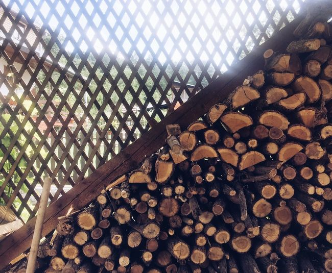 Tree Pattern Nature No People Log Wood - Material Timber Sky Lumber Industry Low Angle View Outdoors Textured  Day Stack Forest Abundance Full Frame Firewood Wood Backgrounds