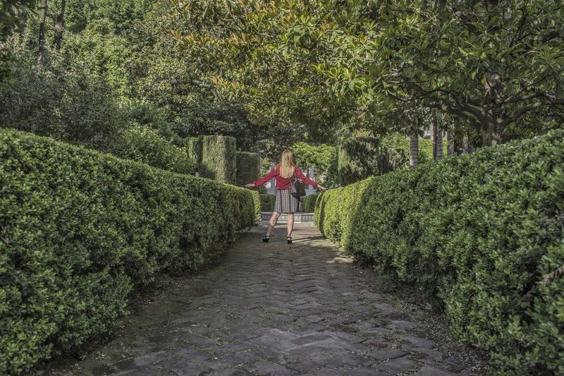 Don't go away Photo Photography Pic Picture Green Parque  Jardin Verde Mujer Woman EyeEmNewHere Eyemphotography Tree Plant Green Color Pathway Garden Path Lush - Description Growing Topiary A New Perspective On Life