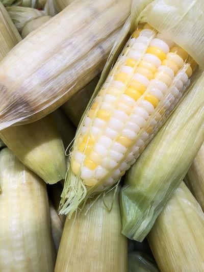 Heap of Corns. Bush Case Casing Chunk Clot Cob Corn Corncob Ear Fiber Food Jacket Kernel Loaf Lump Maize Plant Scabbard Sheath Slipcover Tassel Vegetables Vegetarian White Yellow
