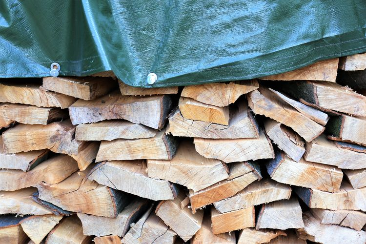 Tree Full Frame Pattern Forest Backgrounds Woodpile Lumber Industry No People Firewood Log Day Wood - Material Abundance Large Group Of Objects Stack Wood Timber Heap