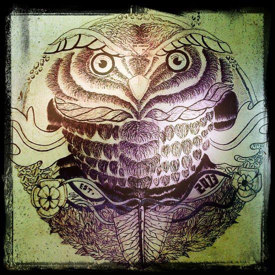 Writing on the Walls Graffiti Art, Drawing, Creativity Owl Art Local Talent