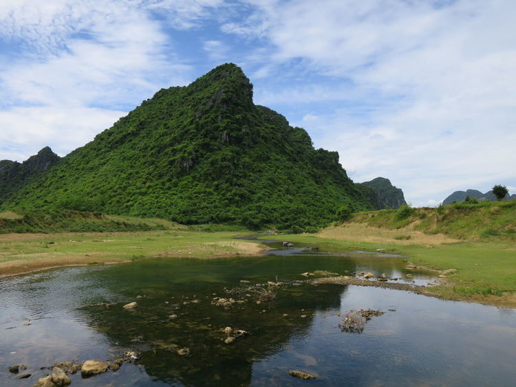 Lush Green Mountains Animals Animals In The Wild Beauty In Nature Cloud - Sky Day Forest Hills Lake Landscape Lush Green Mountains Lush Greenery Mountain Nature No People Outdoors Reflection Reflection Lake Scenics Sky Son Trach Vietnam Water Waterfront
