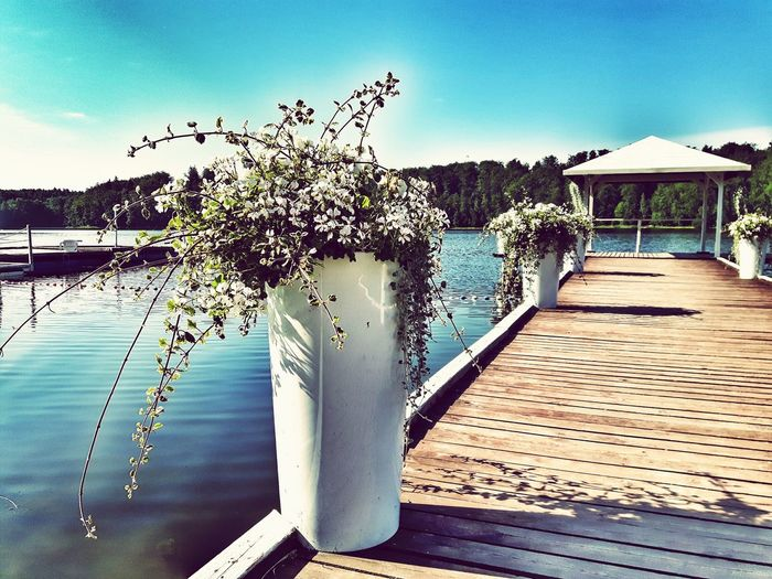 Summer lake Water Sea Day Nature Tranquility Outdoors Summer No People Beach Sky Blue Beauty In Nature Tree Lakeshore Lake Pier Pier Lake Shore Otomin Holidays Vacation Wedding Location Wedding Flowers Wedding Walk The Week On EyeEm