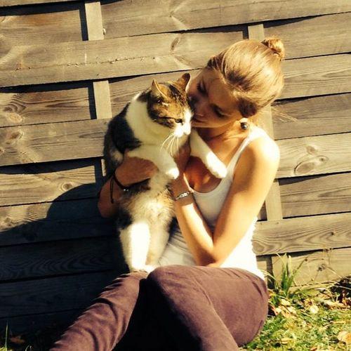 my little cat Cat Animals Love Sun_collection
