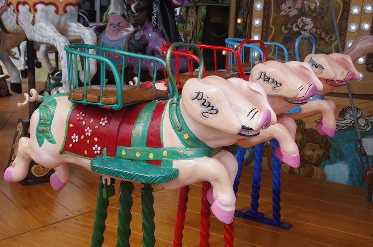 France Normandie Pork Amusement Park Arts Culture And Entertainment Carousel Close-up Day Frankreich Holzschweine Multi Colored No People Normandy Outdoors Schwein