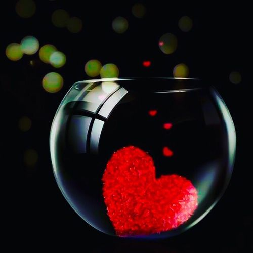 Aimez vous tous les jours ❤ Love Valentine's Day  Heart No People Bocal Redheart Fishbowl Black Color Red Black Background