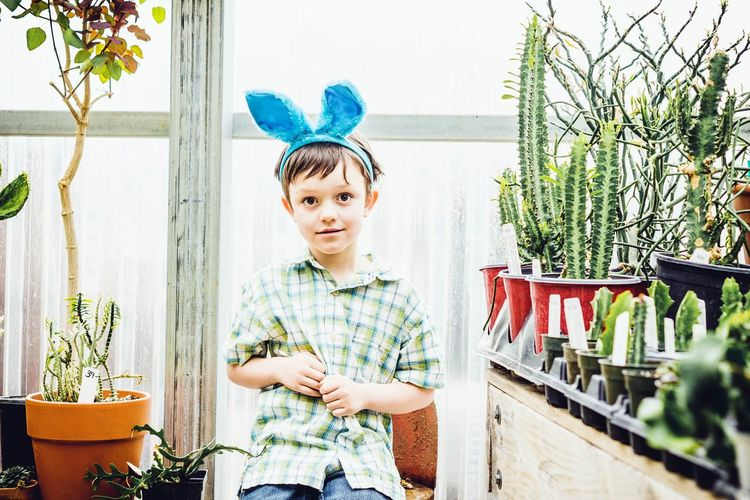 Portrait of smiling boy wearing headband while sitting by window in plant nursery