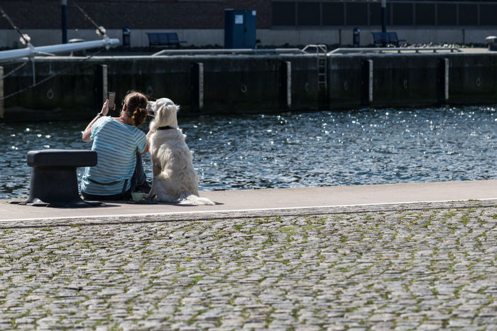 Taking selfies with a friend Animal Love Harbour Pier Relaxing Woman Woman With Dog Dog Dog Love Friendship Selfie Selfies Summer Waterfront