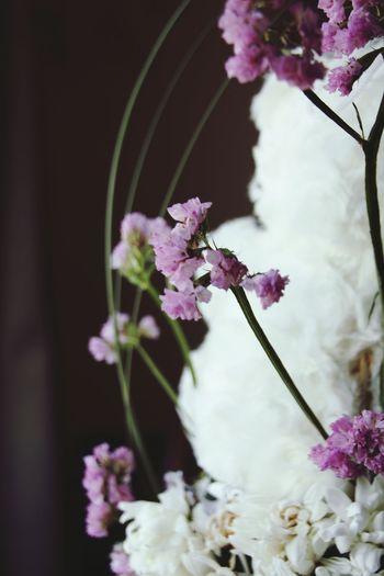 { رَبِّ لَا تَذَرْنِي فَرْدًا وَأَنْتَ خَيْرُ الْوَارِثِينَ } Flowers Flower Collection Flowerlovers Flowerpower Faith Taking Photos EyeEm Nature Lover Hope Takenbyme Ta9weeri تصويري  ابوظبي