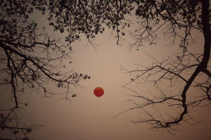 Sky Bangladesh 🇧🇩 Huaweigr52017 Dhaka, Bangladesh Street Photography Night Balloon