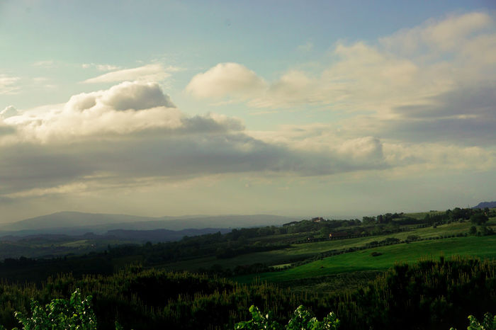 Throwback to last spring in Tuscany Scenics Landscape Beauty In Nature Nature Sky Agriculture Cloud Photography Clouds Travel Vacations Travel Photography Outdoors Italy Tuscany Dark Light Window View Go Green Throwback Plant Cloud - Sky Tranquil Scene Welcome Weekly