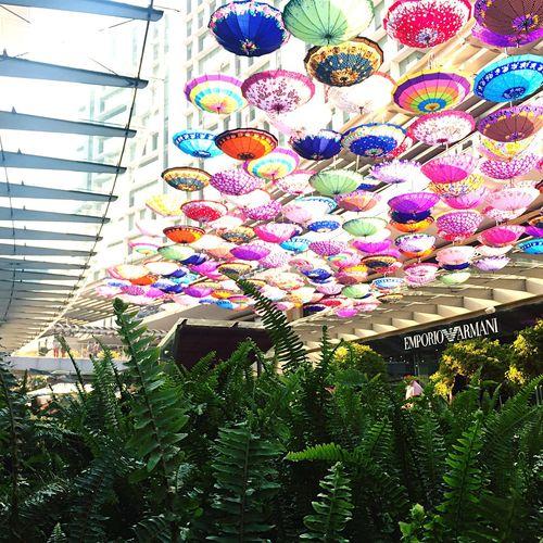 Happy Spring. My City Mexico City Umbrellas Umbrella Ceiling Colorful Urban Spring Fever
