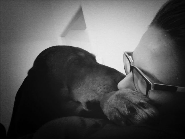 Relaxing Dog Chillin My two Loves ♡ The Human Condition