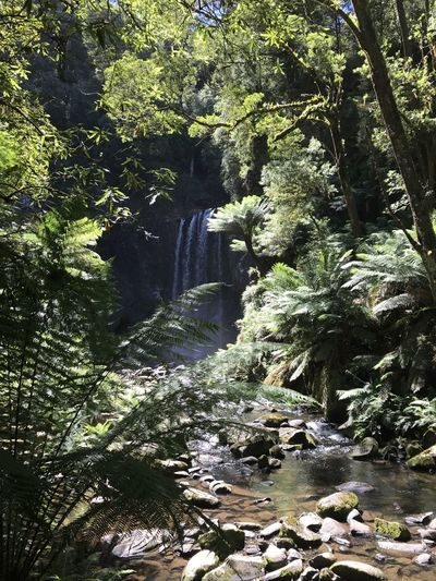 Hopetoun Falls Water Waterfalls