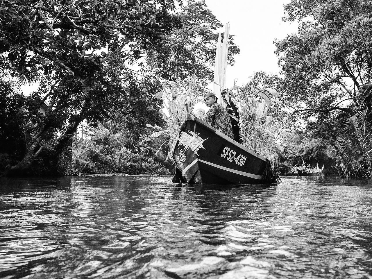 tree, water, transportation, nautical vessel, boat, mode of transport, nature, waterfront, river, day, outdoors, moored, houseboat, sailing, no people, beauty in nature, sky
