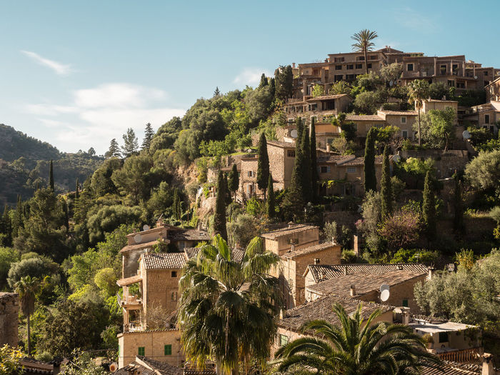 Mallorca Majorca Holiday Vacations Tree Architecture Built Structure Plant Building Exterior History Building The Past Sky Ancient Nature Day Growth No People Mountain Travel Destinations City Old Green Color Outdoors Village Historic Palm Tree Stone Stone Material Settlement House SPAIN