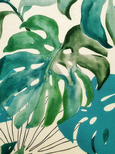 Full frame shot of green paper plant