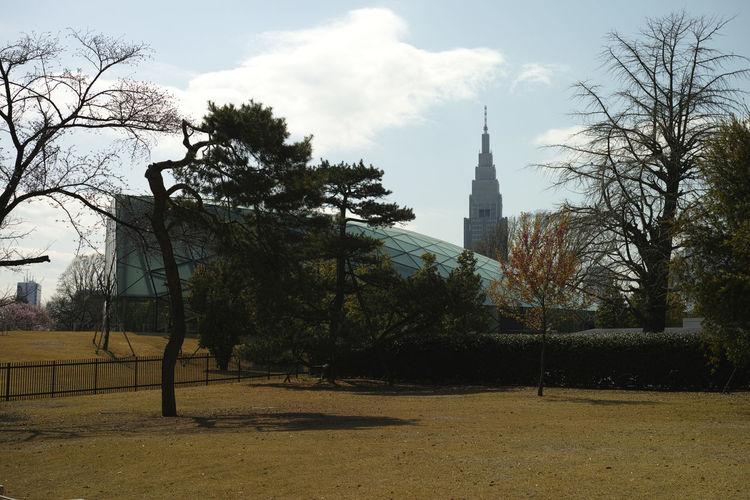 Distant Entrance EyeEm Tokyo MeetUp 12 Garden SHINJYUKU Shinjyukugyoen Sunny