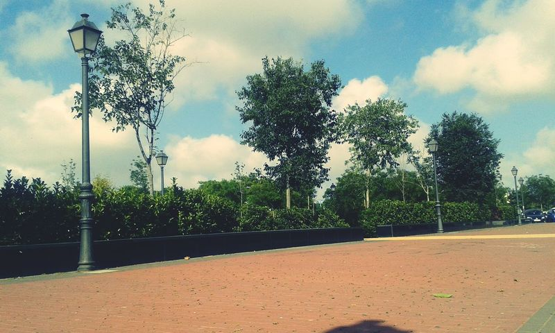 Alone in the brightness. Taking Photos Park SPAIN Paisaje Enjoying Life Sun