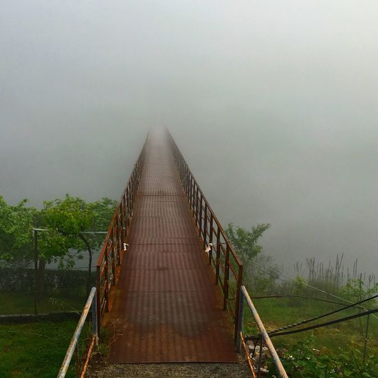 Misty Morning CaminodeSantiago Bridge Fog Feel The Journey Galicia, Spain Theway Elcamino SPAIN Showcasejune Finding New Frontiers