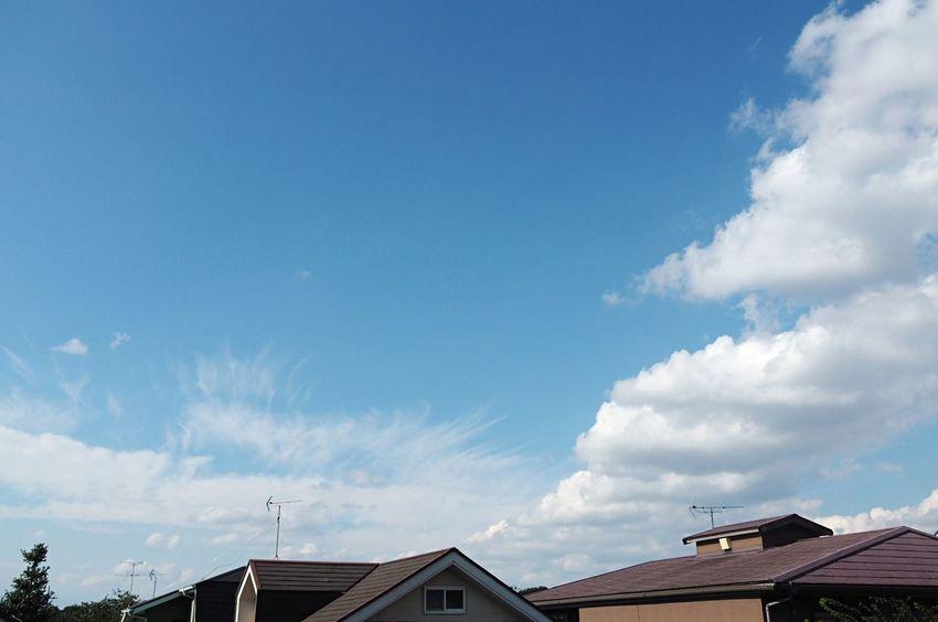 一眼レフ ミラーレス オリンパス E-M10 Olympus Sky イマソラ